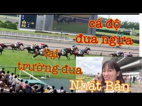 Theo Chồng Nhật Đến Trường ĐUA NGỰA Lớn Ở Nhật Bản.Chơi Đua Ngựa.Cuộc Sống Nhật Bản.