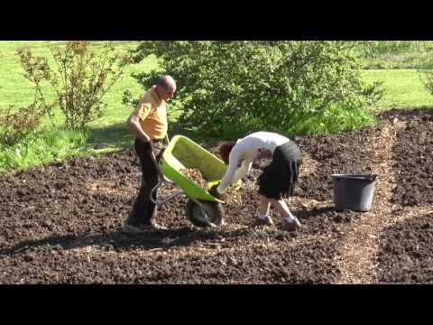 Le tracé du jardin avec les baguettes coudées 2016