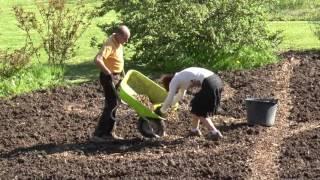 Le tracé du jardin avec les baguettes 2016