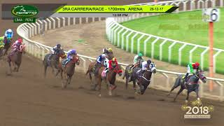 Vidéo de la course PMU HANDICAP 3 ANS ET PLUS