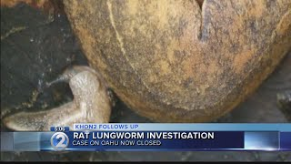 Investigation wraps on Oahu rat lungworm case with no identifiable cause