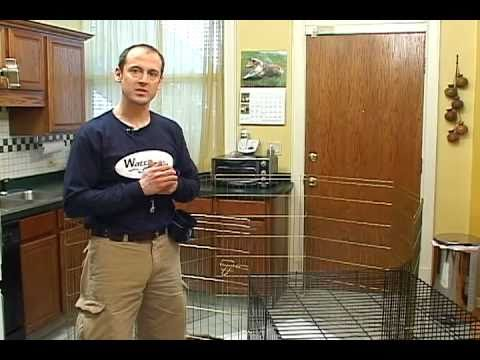 Puppy Housetraining - Crate training and long term confinement area