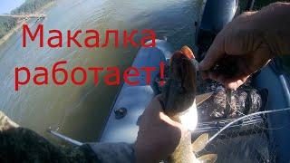 Макалка сработала Рыбалка в обских протоках