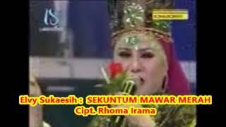 Elvy Sukaesih _ SEKUNTUM MAWAR MERAH _ Iringan Musik Soneta Group Rhoma Irama   1,085