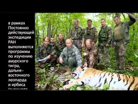 Проект Белый кит фильм Института ПЭЭ имени  Северцова РАН