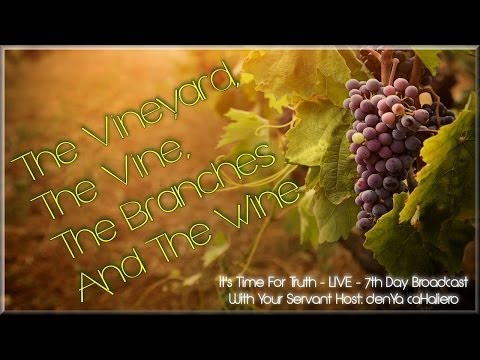 YaHuWchanon (John) ch.13-15 - The Vineyard, The Vine, The Branches And The Wine