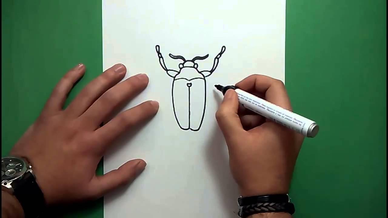Como Dibujar Un Escarabajo Paso A Paso How To Draw A Beetle