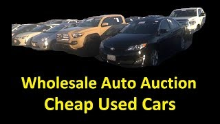 Wholesale Cars Dealer only Used Auto Auction Sale Preview