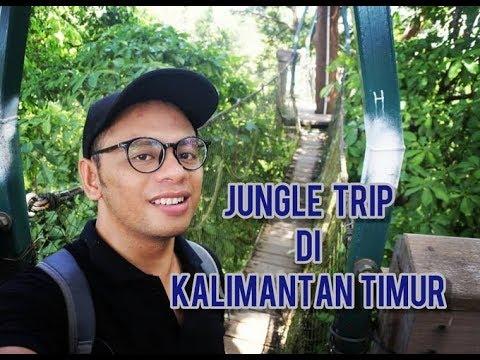 JUNGLE TRIP DI KALIMANTAN TIMUR
