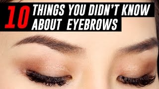 10 Things You Didn't Know About Your Eyebrows