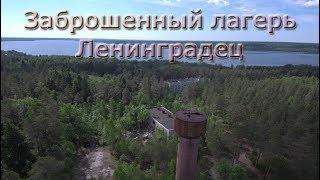 Заброшенный ДОЛ Ленинградец   оз. Нахимовское /Сталк/Ленинградская область