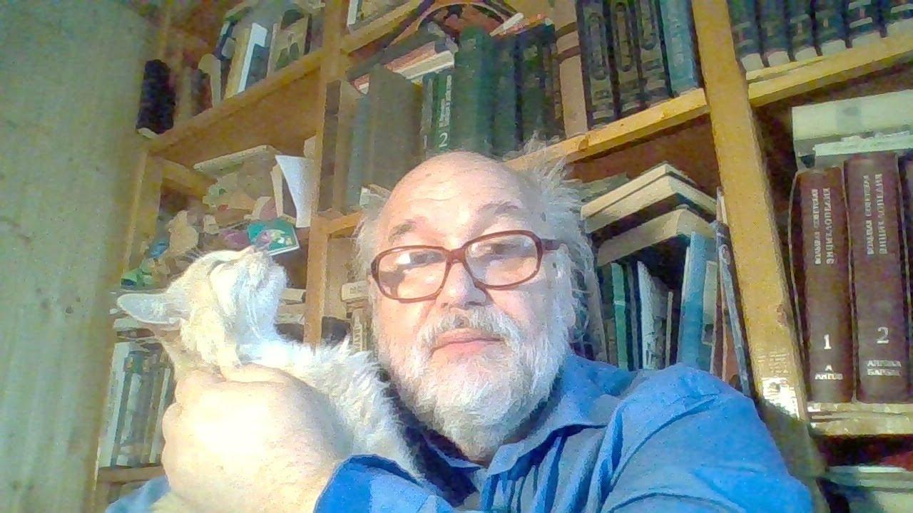 Стрим Бояршинова с котом от 5 августа 2020