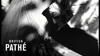 Maltese Lace (1953)