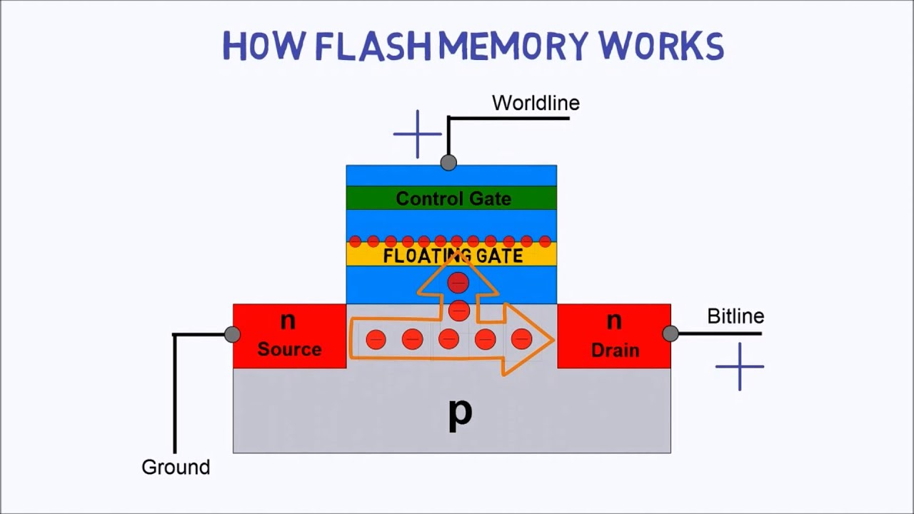 Weight of Data Stored in Flash Drives