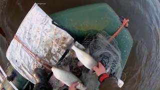 Рыбалка КАСТИНГОВОЙ сетью глубокой осенью с ЛОДКИ ЗАКРЫТИЕ СЕЗОНА