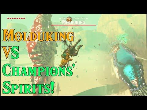 Molduga King VS Champions' Spirits! Magic Meter in Zelda Breath of the Wild DLC