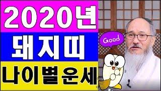 2020년 돼지띠운세★알면 쓸데있는 위기탈출★ (월별,…