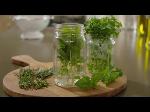 How to Keep Herbs Fresh | An Original Knorr® Video