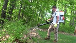 Mosquito & Tick Treatment | Bug Bully Pest Control in Princeton, MA
