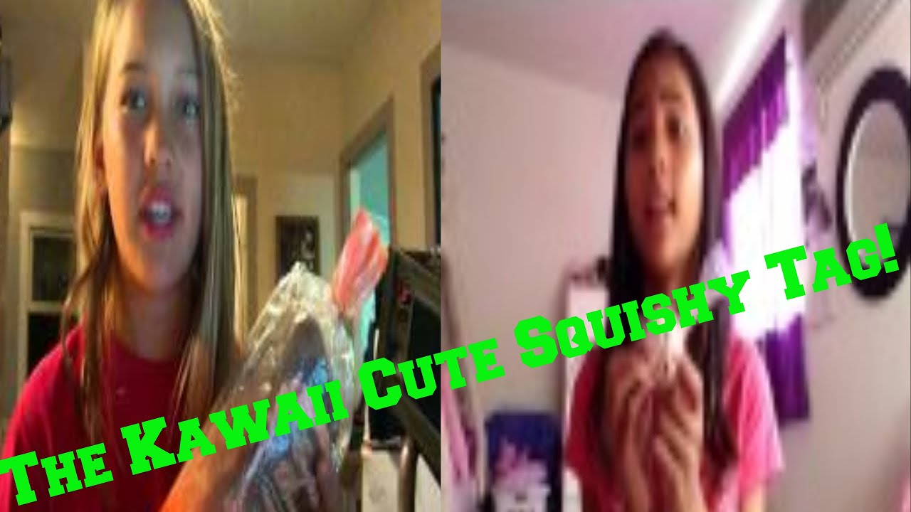 Ketchupgiri Squishy Tag Questions : The Kawaii Cute Squishy Tag! [Collab WIth Halia] 2017-01-29