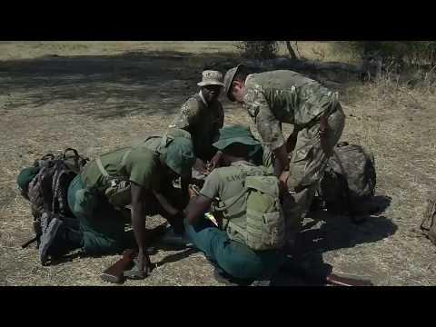 Malawi Turns To British Troops In Poaching War