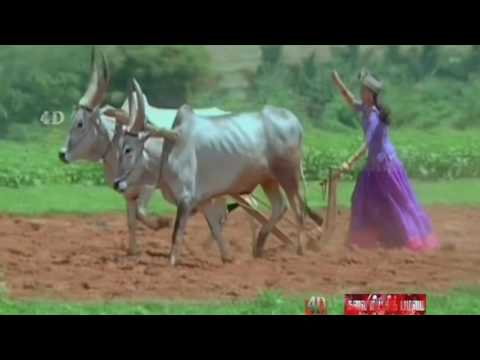 Adi Aasa Machan Vangithantha Malligaipo 720p
