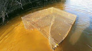 Рыбалка на Мордушки Катиски осенью в обмелевшей Сибиркой реке. Эти снасти умеют удивлять уловом.