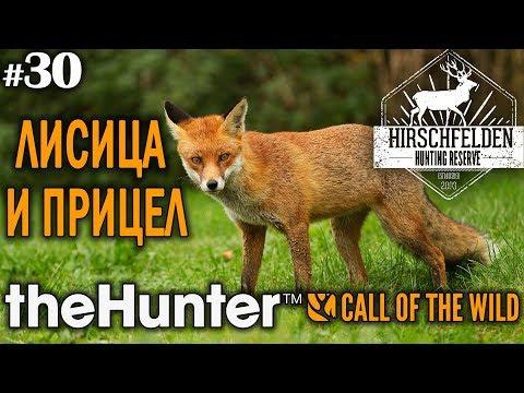 theHunter call of the wild #30 🔫 - Лисица и Прицел - Винтовка - Лиса