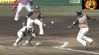 【阪神】北條のスーパーバックホーム送球にセーフ判定 矢野監督は即リクエスト