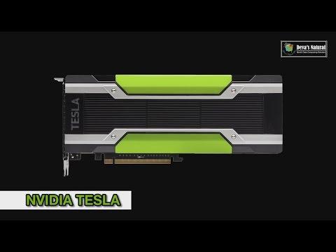 ความแตกต่างระหว่าง NVIDIA Tesla : QUADRO : GeForce