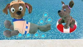 Patrulla canina juguetes español PAW PATROL EN PISCINA ENSEÑA A NADAR NUEVOS BEBES CACHORROS