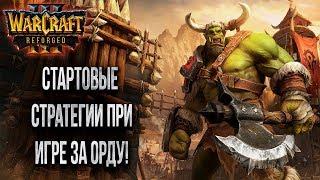 ОСНОВЫ ИГРЫ ЗА ОРДУ: Бета Тест Warcraft 3 Reforged