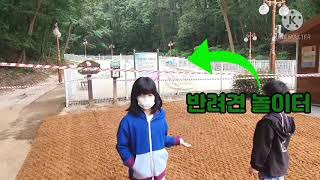 성남 가볼만한 곳^^ 율동공원