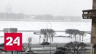 'Погода 24': снегопады сходят на нет, на смену им идут морозы - Россия 24