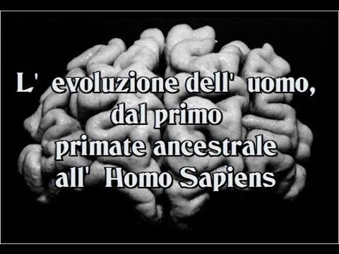 L'evoluzione dell' uomo: le moderne teorie out of Africa 1-2-3