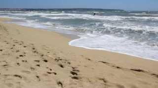 Mallorca - Playa de Palma / HOTEL HSM VENUS PLAYA / Beach - Strand - Playa / Majorca island