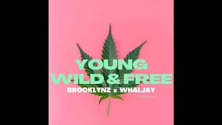 Download Lagu ฿ROOKLYNZ x WHALJAY YOUNG WILD & FREE (THAI VER.) [MIXTAPE] mp3