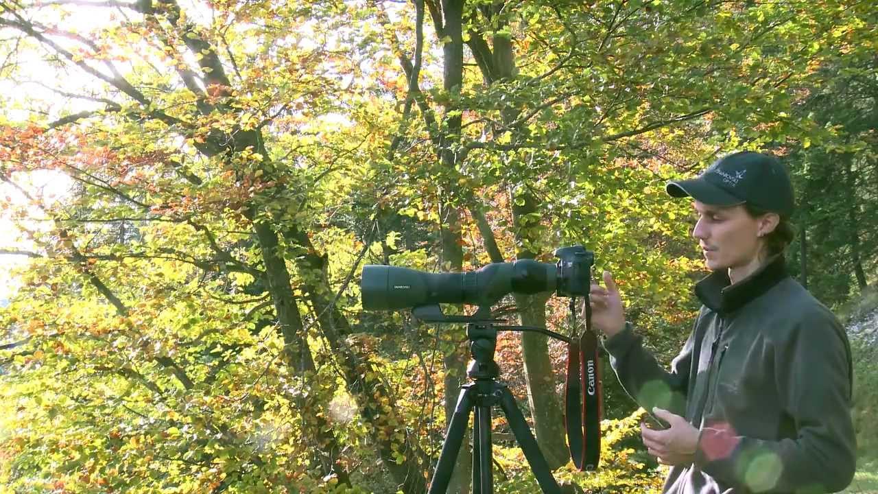 Video Tutorial Swarovski Optik Digiscoping Camera Adapter Tls Apo