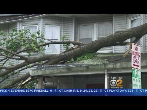 NJ Storm Cleanup