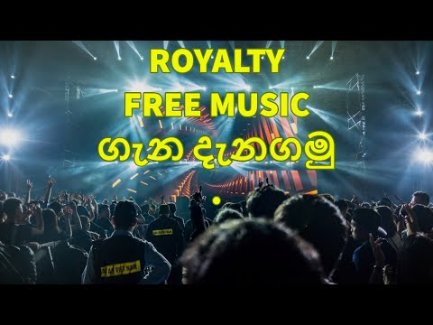 DeeD Free | Best Copyright Free Music for YouTube Videos — Top 3 Sites