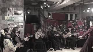 清野春美フラメンコ教室PR動画