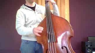 Pirastro Evah Pirazzi Weich (Strings for acoustic bass) presentation