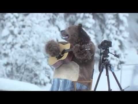 Bear Does Laundry: Samsung Washing Machine Commercial