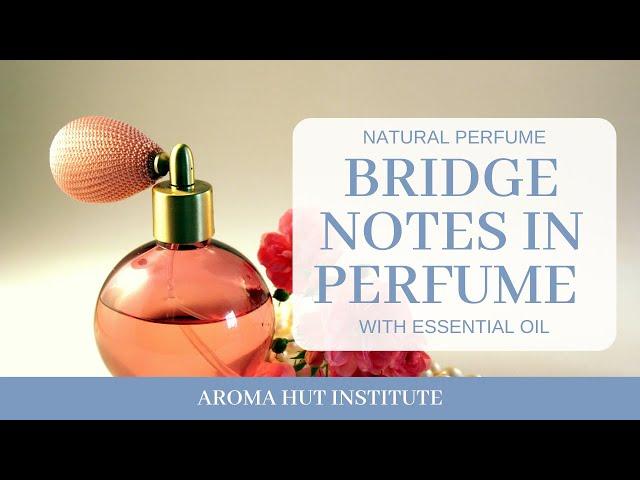 Bridge Notes in Perfumes