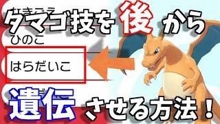剣 技 ポケモン 盾 遺伝 タマゴ