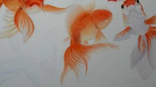 วาดสีน้ำ ปลาทอง Watercolor painting Goldfish