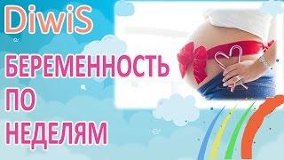 видео Беременность 22 недели: развитие плода и ощущения