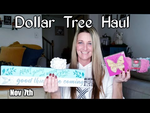 Dollar  Tree  Haul / All New Items / Nov 7th