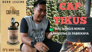 Download lagu Mabuk di Pabrik Cap Tikus | INFO LUWUK