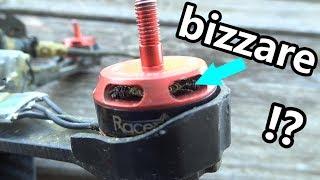 MOTEUR BRUSHLESS CRAMÉ (drone racer)